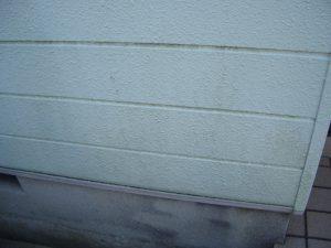 外壁塗装のサイン コケ